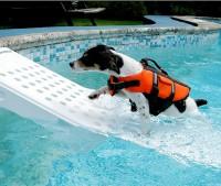 Skamper Ramp - Sicherheitsrampe- Hunderampe
